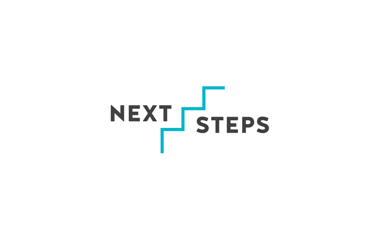 Next Steps